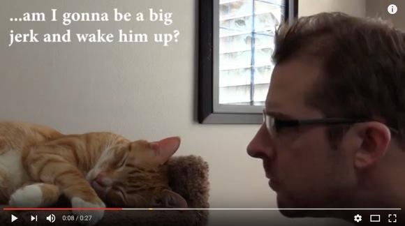 寝てる猫を起こすニャ! 話題の「猫へのリベンジ動画」に対して 「猫に超優しい反論動画」が投稿される