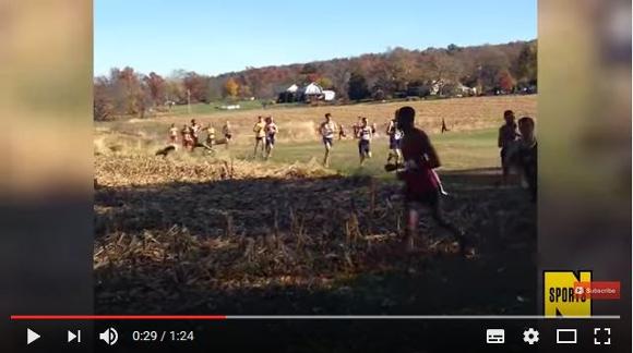 【衝撃動画】マラソンの列に猛スピードのシカが次々と乱入しランナーがブッ飛ばされる