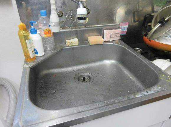 「台所で洗髪したら恐ろしいことが起こる……」というツイートがマジ閲覧注意! ごはん前には見るなよ!!