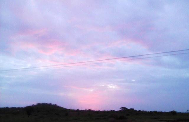 【マサイ通信】第50回:マサイ族が撮影した初日の出