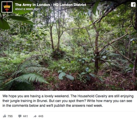 【全員見つけたら神!】英陸軍による「ジャングルに何人の兵士が隠れてる?」って問題がめちゃムズ!!