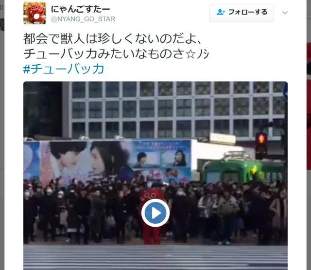 【悲報】大人気のゆるキャラ「にゃんごすたー」 渋谷駅前交差点を闊歩するも誰にも声をかけられず……