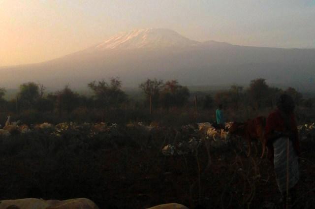 【マサイ通信】第57回:マサイ族がスマホで撮影したマサイ族の超日常写真集その10