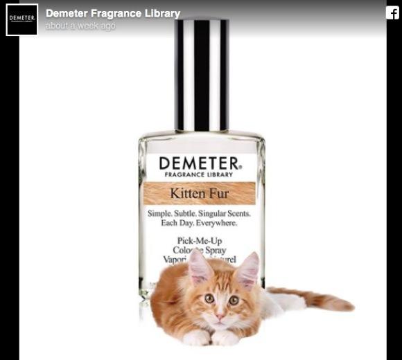 【ファッ!?】「子ネコの香りになれる香水」が爆誕