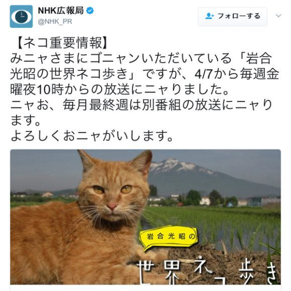 【猫好き必見】一部から超人気『岩合光昭の世界ネコ歩き』が本日22時からレギュラー放送開始! ネットの声「嬉しいニャオオオオ!」「OH MY CAT!!」