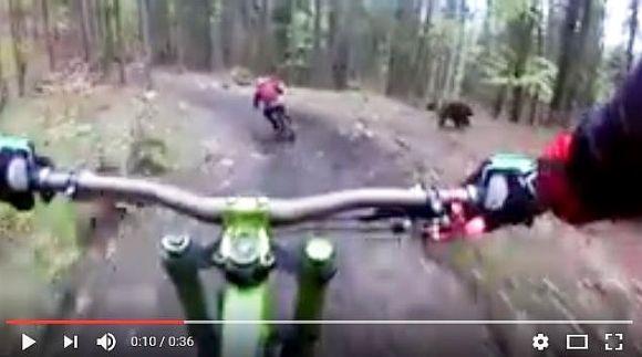 【超怖い】クマが全力でサイクリストを追っかけ回す動画がマジで恐怖! 動画再生回数が720万回超えに!!