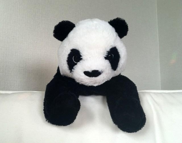 【衝撃】パンダは上野動物園だけって思ってる人がいるってマジ? 神戸と和歌山にもおるやん / 和歌山には1才の子パンダもいるよ!
