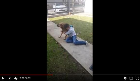 【感動の再会動画】迷子の犬が8カ月ぶりに帰ってきた! 飼い主少年の喜ぶ様子が見る者の涙を誘う「痛いほど気持ちが分かる」
