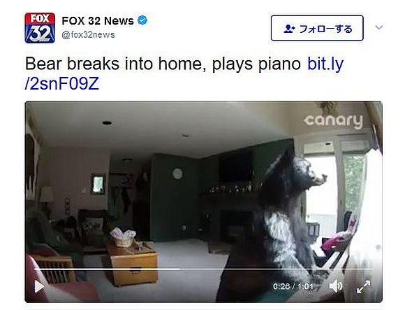 クマが民家に侵入してピアノを演奏! かなり練習が必要なレベルだけど自信満々な姿が超キュート!!
