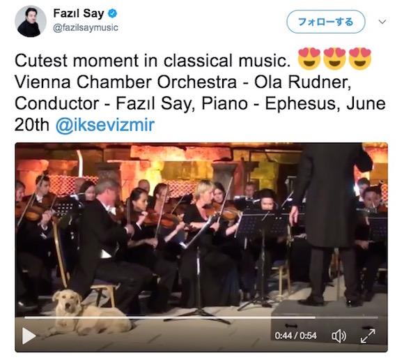 【ハプニング】オーケストラの演奏にワンコが乱入! クラシックと融合した癒し動画に思わずほっこりする人が続出中