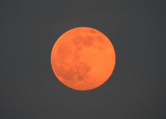 【必見】本日6月9日は年に1度の「ストロベリームーン」だぞーーッ! 赤みがかった激レア満月を見逃すな!! 月の出は18時31分頃