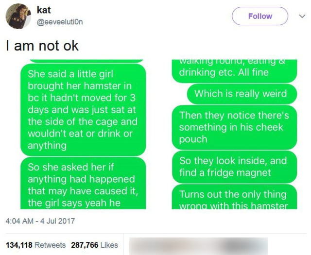 「カゴの中のハムスターが3日間動かず何も食べない」と少女が獣医のところへ → 予想もしない衝撃の原因が判明!