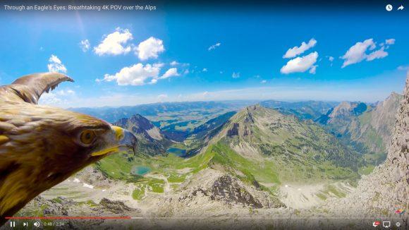 「イーグルの視点」から見たアルプス山脈が美しすぎる / 貫禄たっぷりの飛び方にも注目