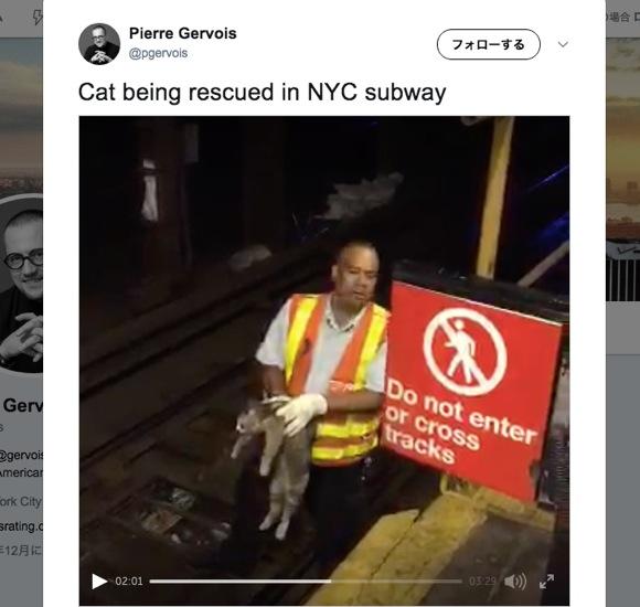 【動画あり】朝のラッシュ時にネコが地下鉄のレールの下に隠れんぼ → 駅員が救出 → 待ちぼうけだった乗客も歓喜