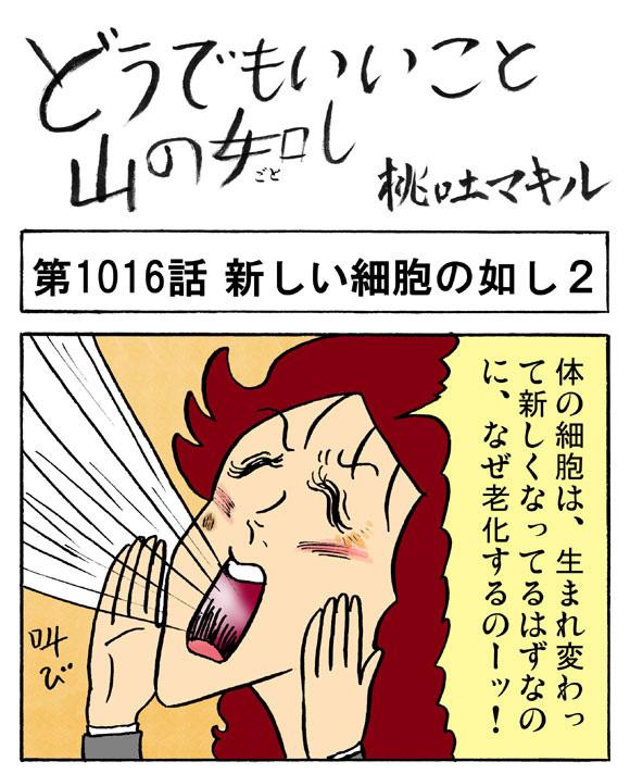 【4コマ】美女になる方法