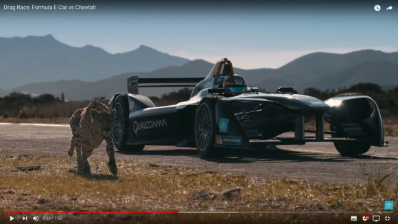チーターの加速力がマジ凄い!  レーシングカーとデッドヒートを繰り広げる対決動画がこれだ!!