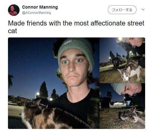 【キャワワ】猫アレルギーの青年が「野良猫の飼い主になるまで」の一部始終を実況した連続ツイートが話題