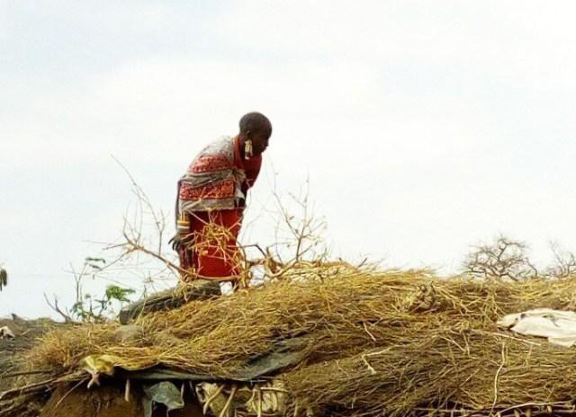 【マサイ通信】第113回:元気がないならこれを見ろ! マサイ族がスマホで撮影したマサイ族の超日常写真集シリーズ21