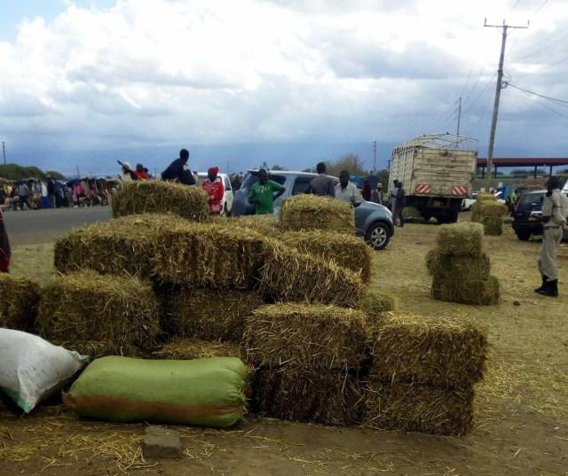 【マサイふれあい街歩き】住民がほぼ全員マサイ族の町「キマナ(Kimana)」編 / マサイ通信:第116回