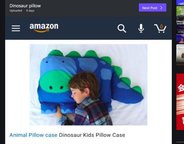 """【これはヒドイ】Amazonで恐竜の枕を注文したら """"モデルの男の子つき"""" で配達された / 購入者は激おこ! ネットにさらした結果"""