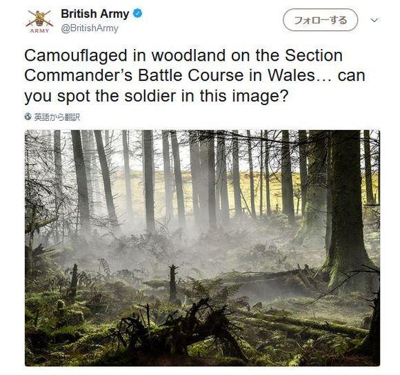 【やってみて】どこに兵士が隠れているか分かる? っていう英軍からの挑戦状が難問すぎる