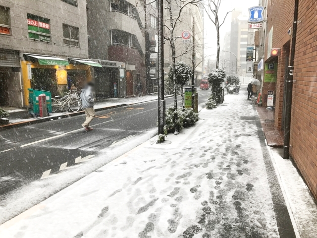 【悲報】東京、ガチで雪が積もり始める