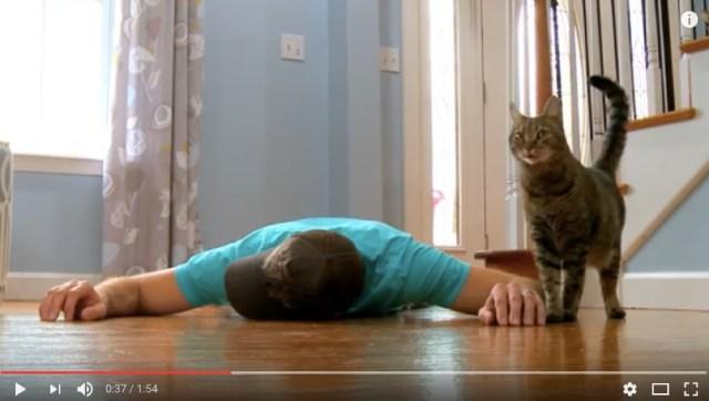 飼いネコの前で死んだふりをしたらどうなる? ある男性がやってみたって動画が人気