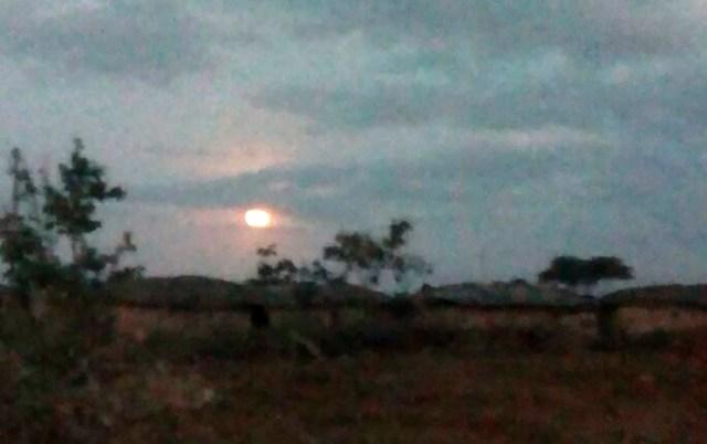 ケニアからスマホで撮影したスーパーブルーブラッドムーンがこちらです / マサイ通信:第136回