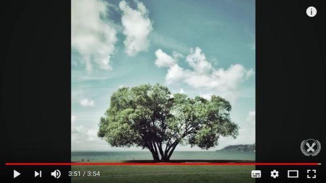 【考えさせられる話】SNSで情報をシェアすることの恐ろしさが分かる体験談『ブロッコリーの木』