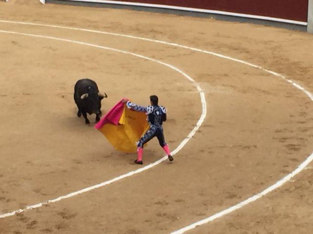 【旅行記】スペインで見た闘牛が残酷すぎて大ショック…途中で闘牛場を抜け出す結果に