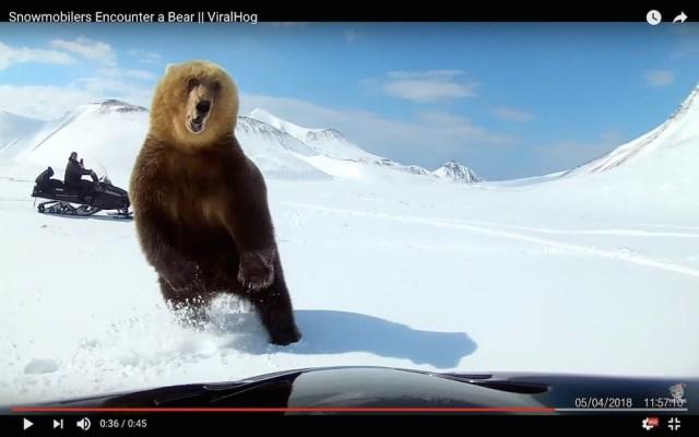 【危機一髪】キレたクマがコワすぎ…スノーモービルで追い払っていた男性が急襲される視点映像