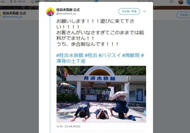 【悲壮】「お願いだから遊びに来てください!」桂浜水族館の『渾身の土下座』がエクストリームすぎる