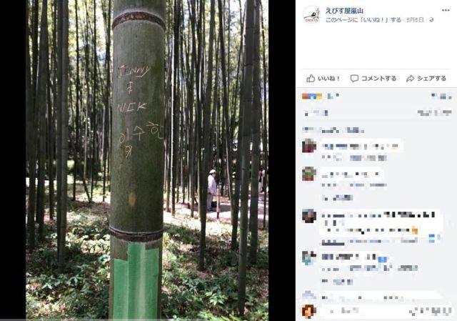 【マナー最悪】京都『嵐山の竹林』に外国語の落書きが…海外ネットユーザーからは怒りの声続出「許されない行為」「恥を知れ」など
