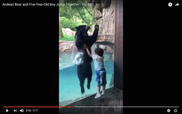 【キュン死】男の子とクマが大の仲良し! 一緒にジャンプして遊ぶ動画が可愛すぎてネット民悶絶