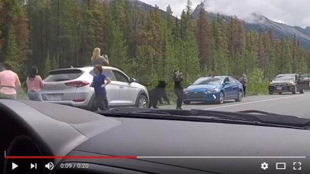 「女性がクマに襲われそうになった瞬間」をとらえた動画がマジで怖い!