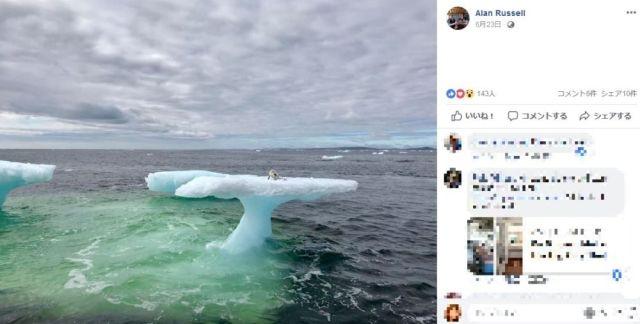 氷河と一緒に海に流されたホッキョクギツネが発見される! 立ち往生したキツネを保護するために漁師が奮闘
