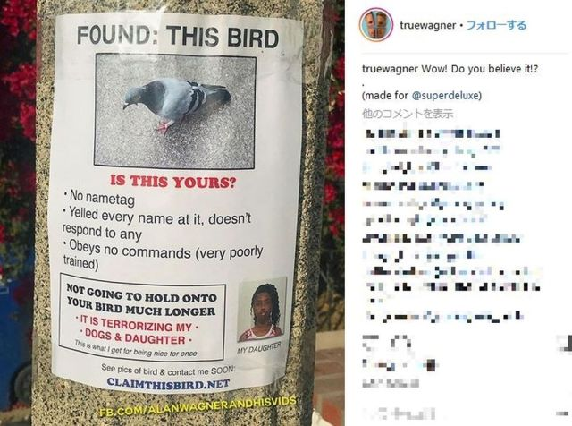 ある海外男性が作る『昔ながらの貼り紙広告』がジワジワ来る~とSNSで人気に! 「このハトを見つけました。あなたのペットですか?」など