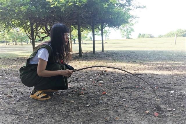 糞虫の聖地『奈良公園』に糞虫はどれくらいいるのか探してみた結果!