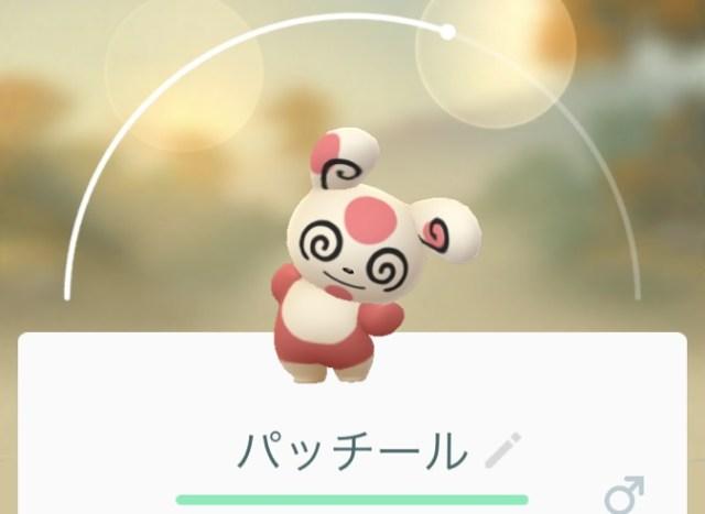 【ポケモンGO】新たに追加された「パッチール」の捕まえ方
