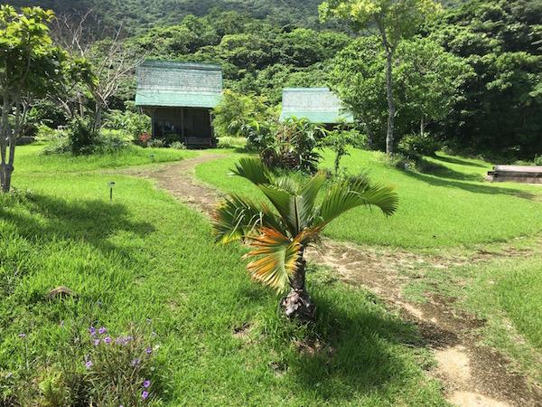 【まさに秘境】元女優の高樹沙耶さんが経営しているジャングル宿『虹の豆』に泊まってみたら異空間過ぎて震えた