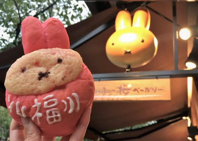 【京都】オープンしたての『みっふぃー桜べーかりー』に行ってみた! 可愛らしいパンから謎なパンまで色んな「ミッフィー」に出会えるぞ