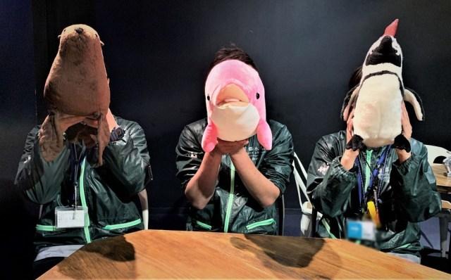 京都水族館の恋愛相談が話題! 面白い返答を連発する「中の人」に話を聞いてきた / ロケットニュース24編集部メンバーへのアドバイスもくれたぞ