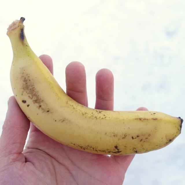 真冬の北海道で「バナナのクギ打ち」にチャレンジした結果…