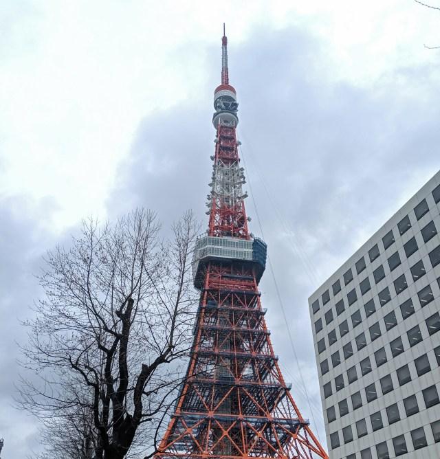 """【謎】東京タワー限定で販売している """"土産物のプリン"""" を買ったら、心底困惑してしまった……"""
