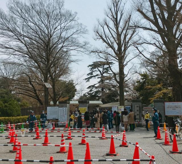 【悲報】東京・新宿御苑、花見シーズン直前に「入園料」を倍以上に値上げしていた…