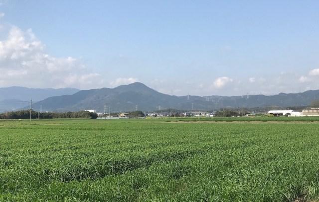 【ポケモンGO】田舎でコミュニティ・デイに参加してみた