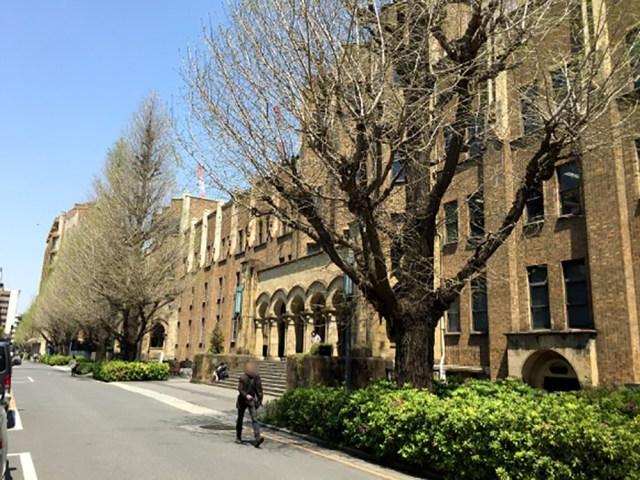 東京大学が首位転落!『THE世界大学ランキング日本版2019』が発表される /「企業人事、研究者の評判」と「国際性」で差