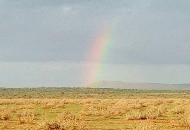 マサイ族が「虹」を見ると悲しむ理由 / マサイ通信:第257回
