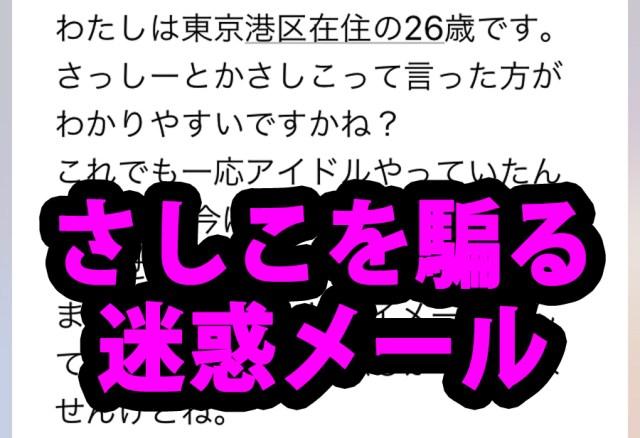 【対決】「さしこ」を騙る迷惑メールと繰り広げた史上まれに見るバカ問答!! ビオフェルミンは誰だ?