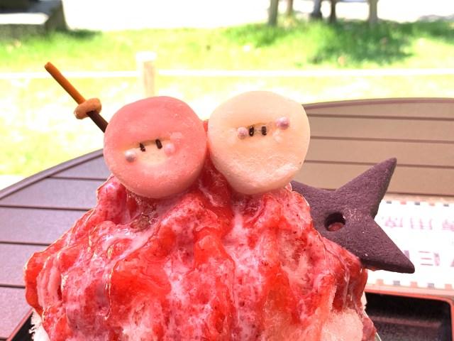 【ジレンマ】『忍者のかき氷』が可愛すぎて食べられない! でも食べないと…! 名古屋・ 金シャチ横丁「CAFE DINER POP★OVER」